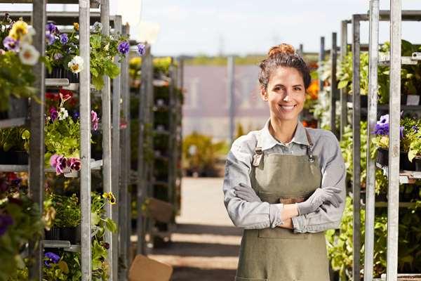 Jak znaleźć pracę w Holandii?
